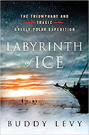 Discounted copies of Labyrinth of Ice by Buddy Levy