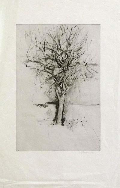 Etching: Baum