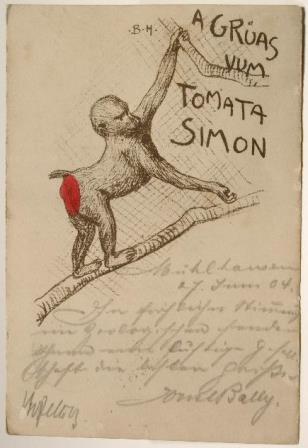 A grüas vum Tomata Simon