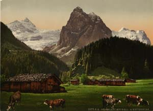 Berner Oberland en Suisse