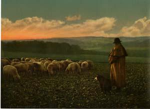 Un berger, lieu inconnu