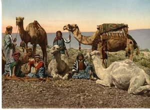 Halte de chameliers dans le désert