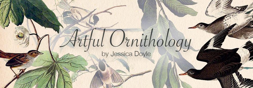 Ornithology Prints, Plates & Lithographs